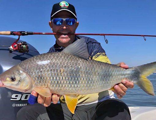 carteira de pesca